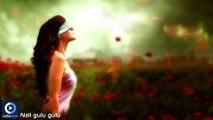 Oriya Romantic Album Alpa Bayasi Jhia | Nali Gulu Gulu | Oriya Latest Songs | Oriya Album