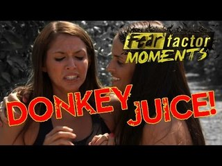 Fear Factor Moments | Donkey Juice