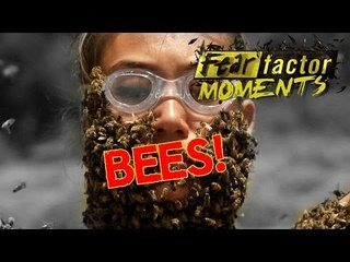 Fear Factor Moments | Bee-Ware