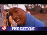 FREESTYLE - GENTLEMAN & DON ABI - FOLGE 66 - 90´S FLASHBACK (OFFICIAL VERSION AGGROTV)