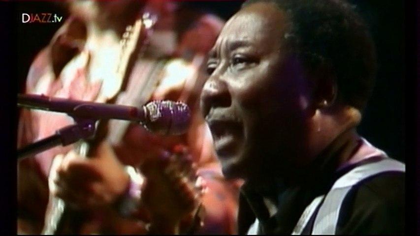Muddy Waters - Molde Jazz Festival (01-08-1977)
