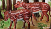 Fossils Show Horses And Rhinos Share An Ancestor