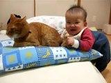 Kedinin kuyruğunu yemeye çalışan bebek  )