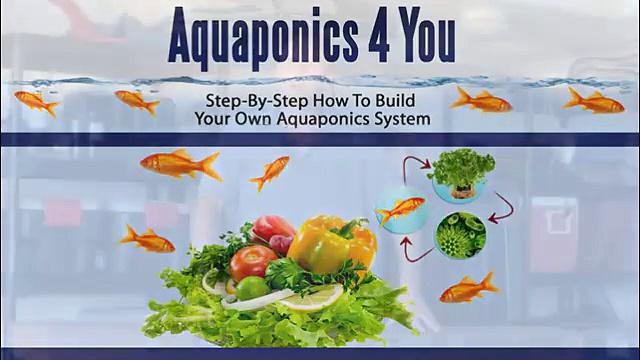 Aquaponics 4 You Intro Video