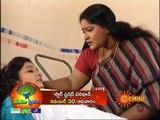 Sravana Sameeralu 24-11-2014 ( Nov-24) Gemini TV Episode, Telugu Sravana Sameeralu 24-November-2014 Geminitv  Serial