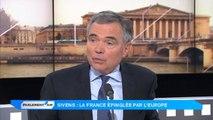 """Barrage de Sivens : """"Cécile Duflot est le chef des altermondialistes français"""""""