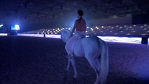 Salon du Cheval de Paris 2014: dans les coulisses du spectacle équestre