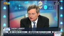Naturex: résultats en forte baisse sur neuf mois: Thierry Lambert - 01/12