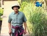 Phim hoàng hôn trên sông Chao Praya tập 16 - clip 2