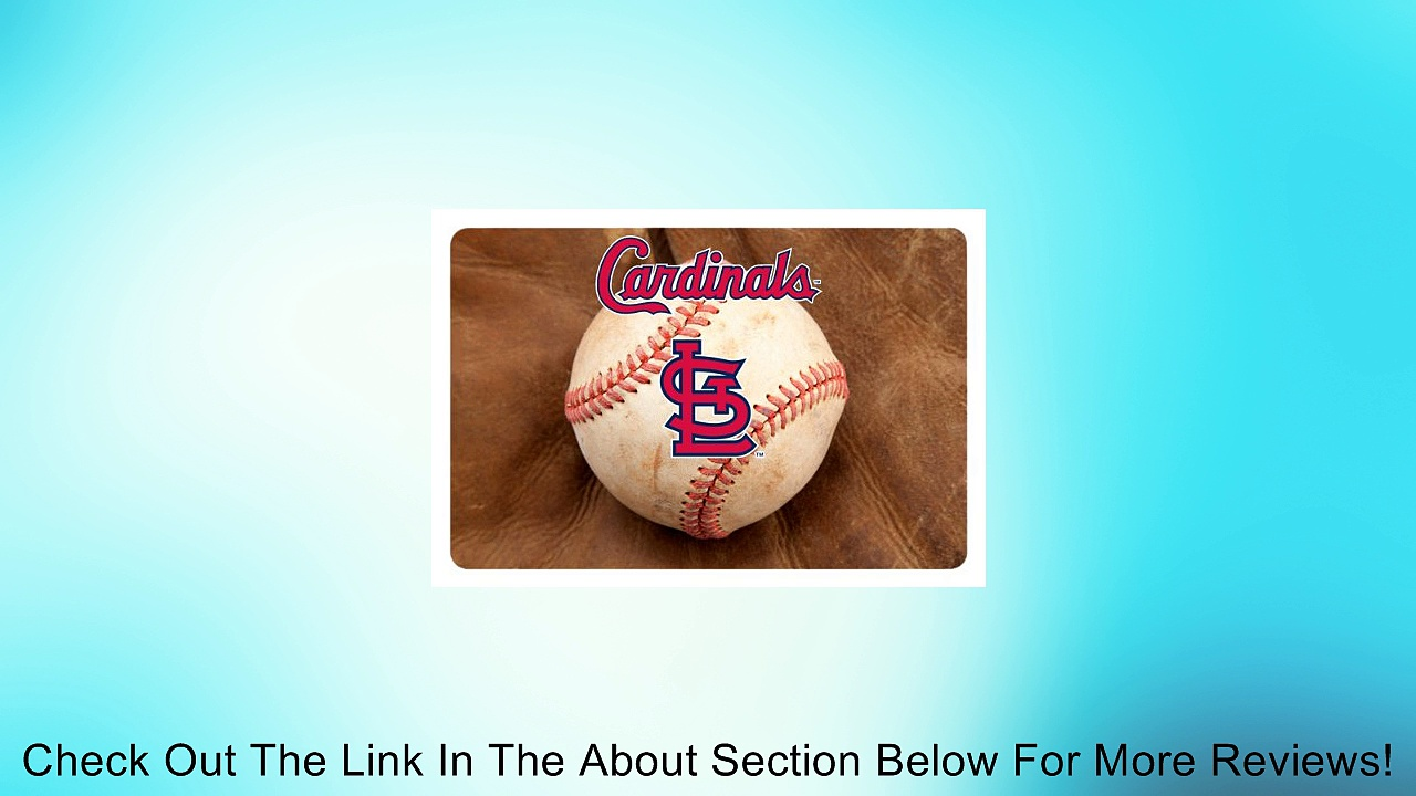 MLB St. Louis Cardinals Baseball Pet Mat Review