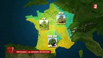 Le réchauffement climatique transforme les paysages français