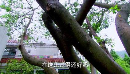 因為愛情有奇蹟 第81集 Because Love is a Miracle Ep81