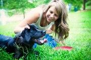 Dog Training Sydney | Dog Boarding Sydney | Dog Trainer Sydney
