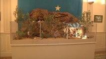 Une crèche de Noël installée à la mairie de Béziers fait polémique