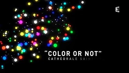 Fête des lumières 2014 : Color or not, cathédrale saint-Jean