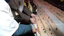 Téléthon: des bénévoles réalisent la Bûche de Noël la plus longue du monde