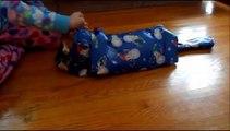 Comment envelopper votre chat dans du papier cadeau pour Noël
