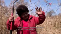 Arirang Prime Ep244C3 Korean Russians' life after the collapse of the Soviet Union