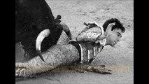 Morrissey - The Bullfighter Dies (Lyrics on screen)