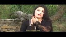 Sexy Song Pashto 11 - video dailymotion