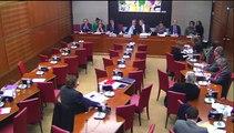 Audition de Mathieu Gallet, PDG de Radio France, devant la Commission des Affaires culturelles de l'Assemblée nationale