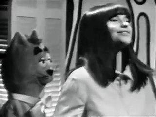 "-Cléo+ minizup et matouvu !! - "" A mes bottes ""(68)"