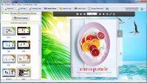 Create attractive & interactive flipping magazine demos based on HTML5