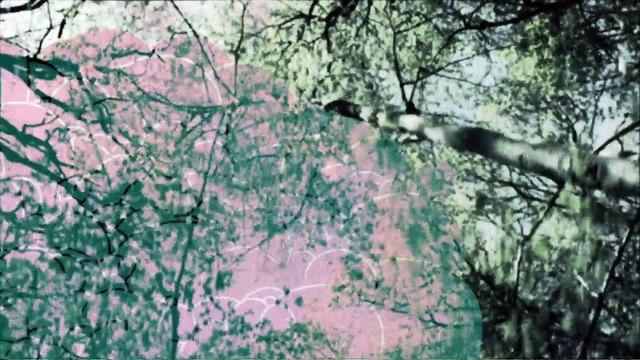Bittersweet - Djazia Satour [Official Video]
