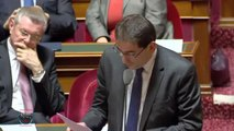 Didier Mandelli - Professions réglementées