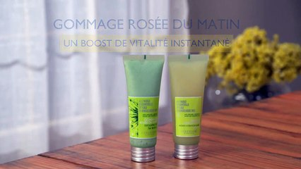 Angelica Maschera e Esfoliante Rosée du Matin -- Consigli d'uso