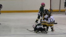 Un adversaire très fairplay relève son adversaire au sol! Hockey sur glace, un sport violent?!
