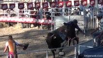Jaripeo Rodeo West Toros Salvajes Tirando A Valientes Jinetes Espuela Libre Y Presal De 1 Hilo Espectaculo Show Familiar 2014