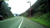 Un cycliste percute un chevreuil à pleine vitesse dans une descente