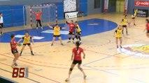 Handball : Les Yonnaises victorieux contre Joué Lès Tours