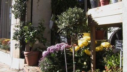 Mobilisation des fleuristes pour le Défi Rose de l'IPC