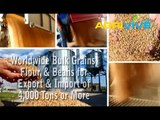 Acquire Bulk Wheat for Importing, Wheat Importers, Wheat Importer, Wheat Imports, Import, Import