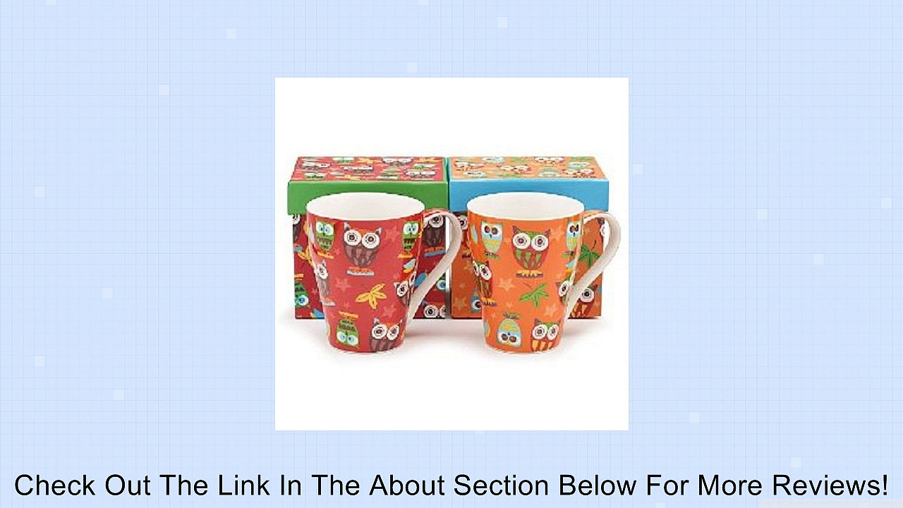 Set of 2 Whimsical Owl Coffee Mugs/cup in Gift Boxes 14 Ounces Adorable Kitchen Decor Review