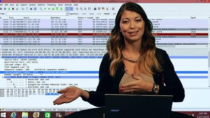 Wireshark 101: Transmission Control Protocol - HakTip