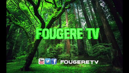 Fougere TV