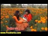 Pashto Best Dance Songs.....Brothers Hits...Hot Dance Pashtoon Girls 2015 (7)