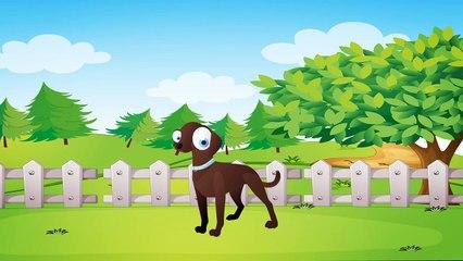 Hayvanlar Ne İster Şarkısı - AfacanTV