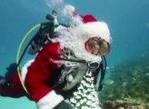 Un Père Noël plongeur en Floride - ZAPPING ACTU DU 24/12/2014