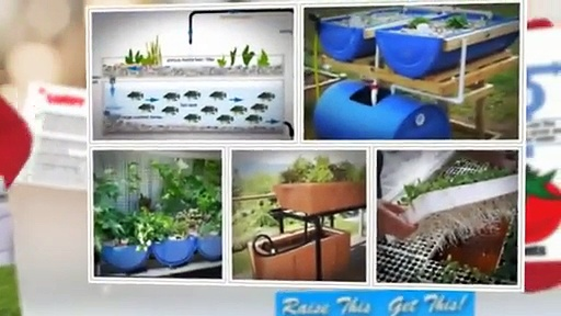 How To Buy Easy DIY Aquaponics Review – Build A Do It Yourself Aquaponics System