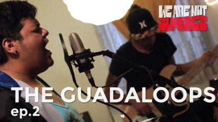 The Guadaloops | 2 |  Onplugged