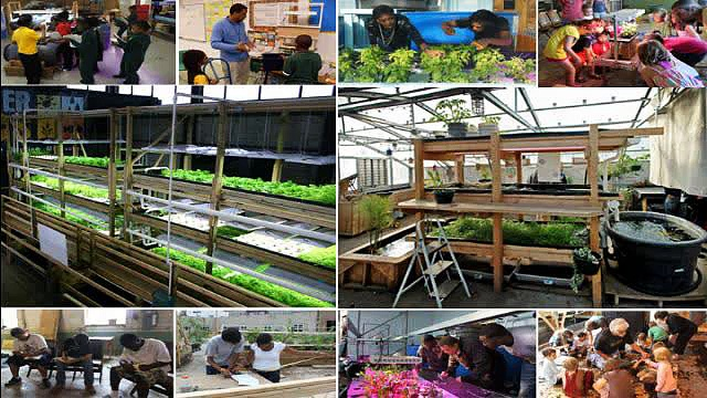 Aquaponics 4 You Pdf WOW Aquaponics 4 You