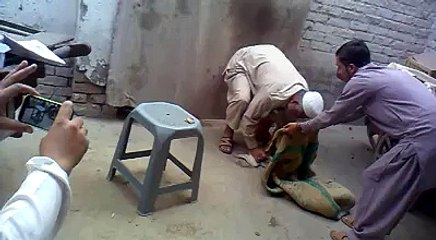 Funny Pathan Cat Video