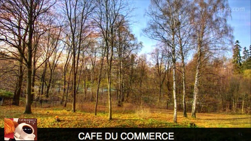 Café du commerce - dimanche 22 février 2015