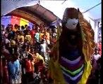 BIDADARI BUROK BARONGSAI SINGA DEPOK @ kembang kilaras