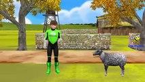 Green Lantern Cartoon Baa Baa Black Sheep Nursery Rhymes for Children ,  Baa Baa Black Sheep Rhymes