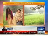 Samaa Kay Mehmaan (Tehmina Daultana Special Interview) - 29th December 2014
